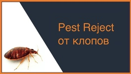 Pest Reject от клопов